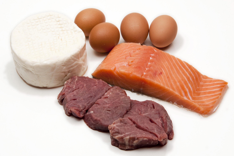Питание богатое белками