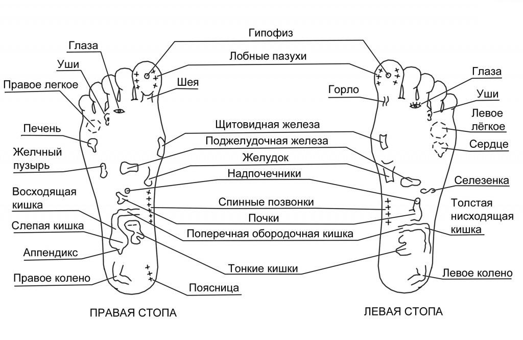 Карта стоп