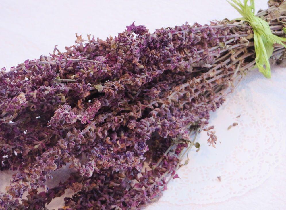 Растение для приготовления лекарства